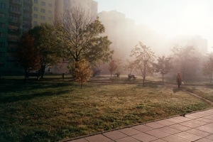 Åh, den gyldne, polske høsten. Den er fin, den.